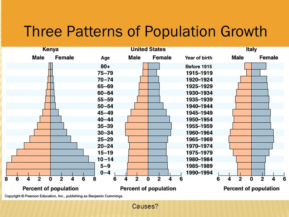 Chapter 52 Population Ecology Ppt Video Online Download
