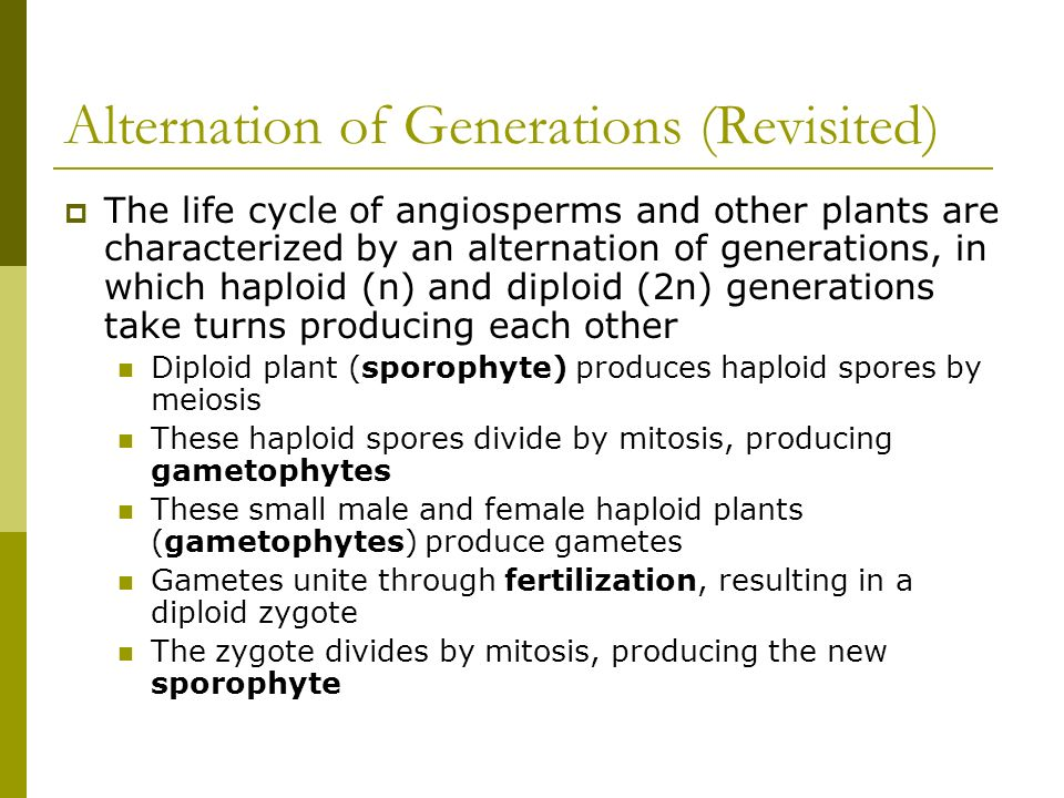 Angiosperm Reproduction & Biotechnology - ppt video online download