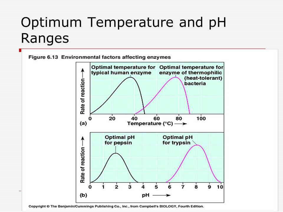 determining optimum temperature and ph for In chemistry, ph (/ p iː ˈ eɪ tʃ /) is a logarithmic scale used to specify the acidity or basicity of an aqueous solutionit is approximately the negative of the base 10 logarithm of the molar concentration, measured in units of moles per liter, of hydrogen ionsmore precisely it is the negative of the base 10 logarithm of the activity of the hydrogen ion.