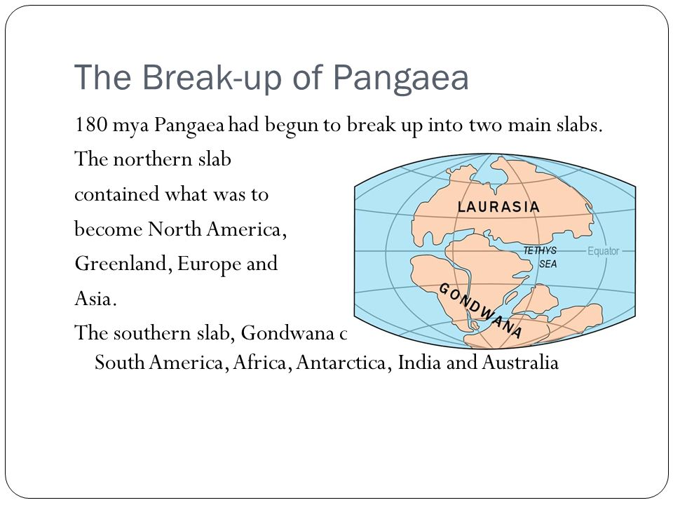 Plate TectonicsThe Birth of a Theory ppt video online download – Pangaea Worksheet