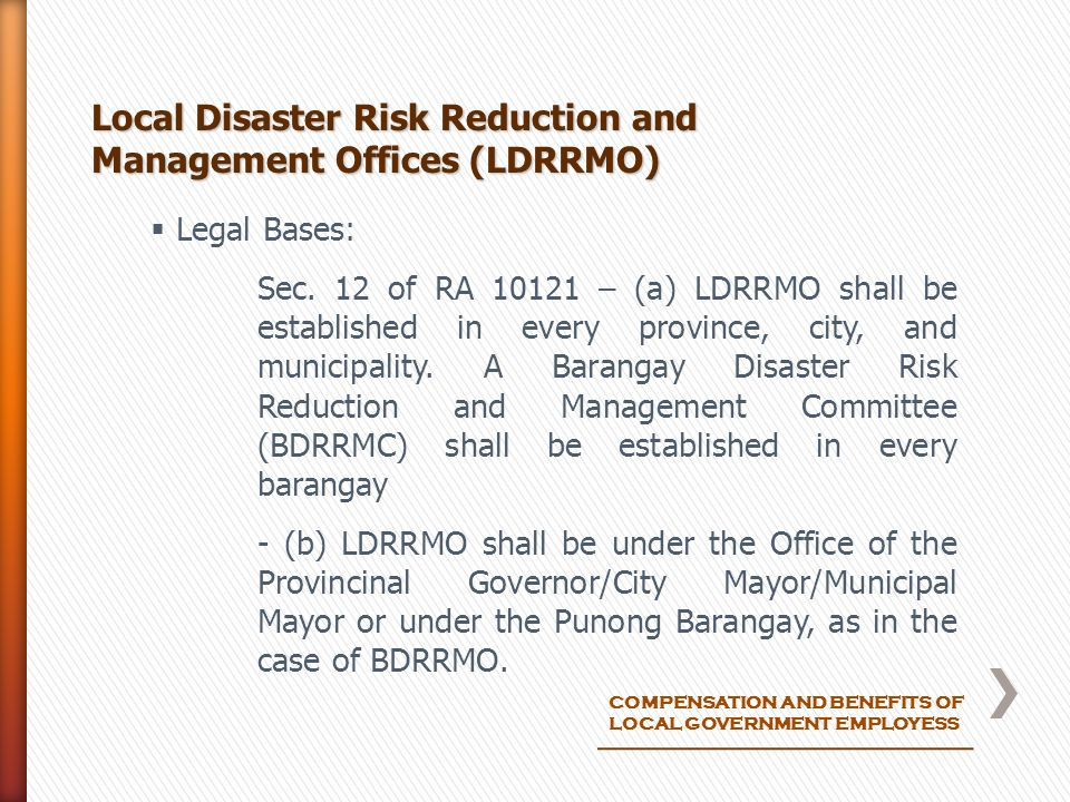 local disaster risk reduction management His mandate being to handle planning and central coordination with regard to matters relating to basic policy on disaster risk reduction implementation of disaster risk management measures is based on the local disaster management plans drafted by the councils.