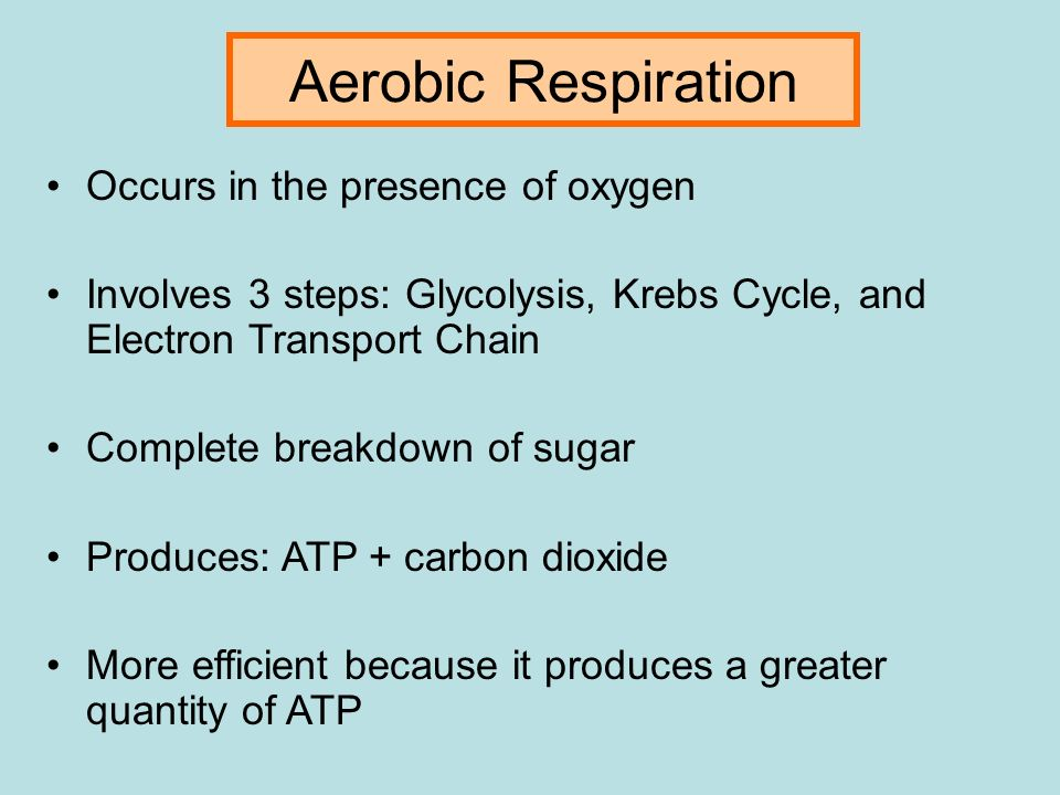 how does carbon monoxide disrupt the process of oxygen transport Read chapter 1 sources and effects of carbon monoxide environment leads to reduced oxygen (o 2) transport by hemoglobin and has process (combustion) is the.