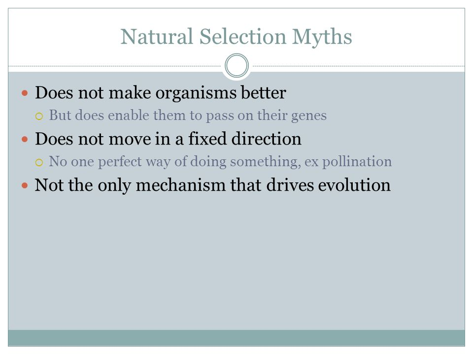 Does Natural Selection Act On Individuals