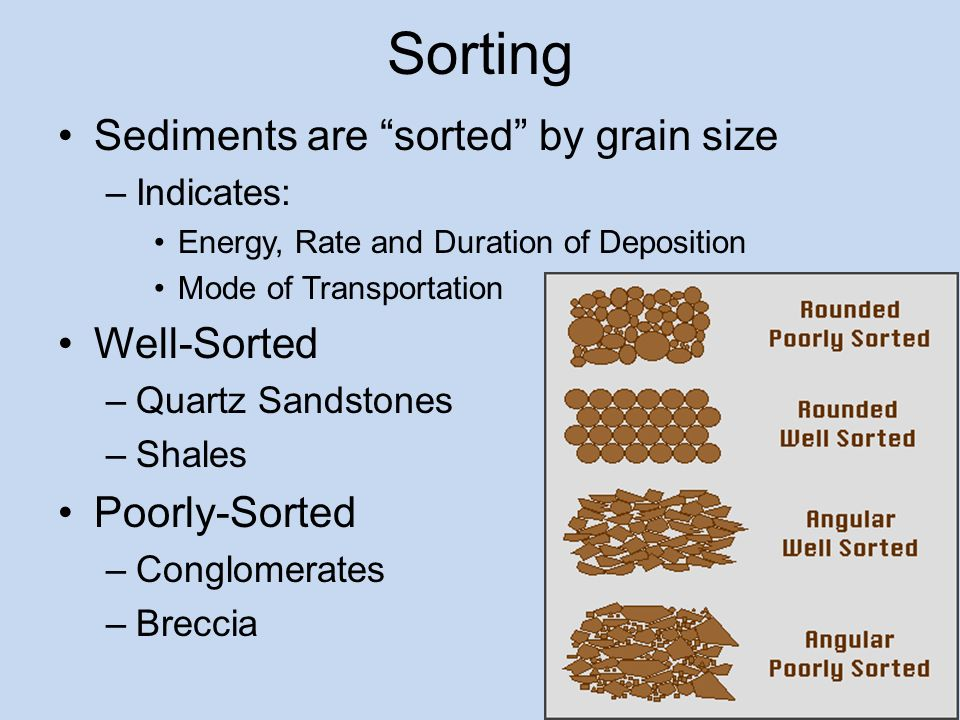 Sedimentary Rocks Ppt Video Online Download
