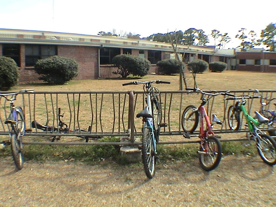 Unlocked bikes (theft), shrubs too close to windows and creating visual barriers