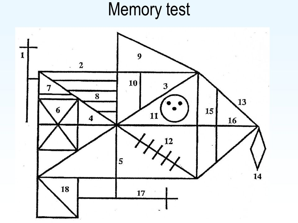 an experiment on the cognitive process of memory In 1990, einstein and mcdaniel developed a typical experimental paradigm for  controlled  cognitive processes underlying prospective memory retrieval.