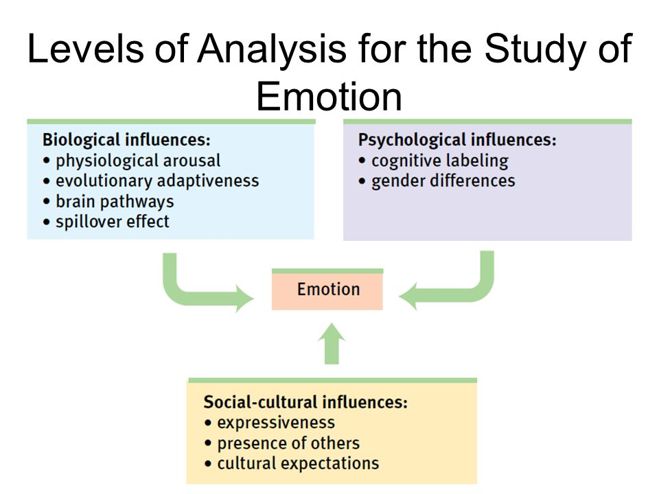 an analysis of emotion Free essay: introduction the purpose of this paper is to provide an analysis and evaluation of the types of emotion from the scientific/empirical and islamic.