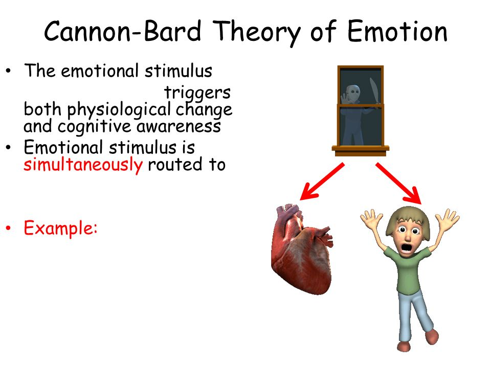 physiological and psychological responses through the cannon bard theory Cannon-bard, and two-factor theories of emotion 1 emotions have three components: calmed through activation of the ___parasympathetic__ nervous system physiological responses that accompany emotion, such as changes in breathing.