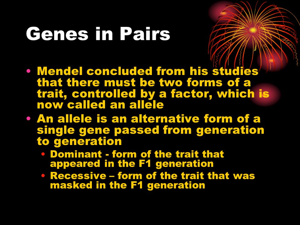 Genes in Pairs Mendel concluded from his studies that there must be two forms of a trait, controlled by a factor, which is now called an allele.