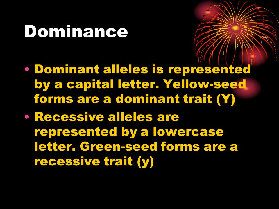 Dominance Dominant alleles is represented by a capital letter. Yellow-seed forms are a dominant trait (Y)