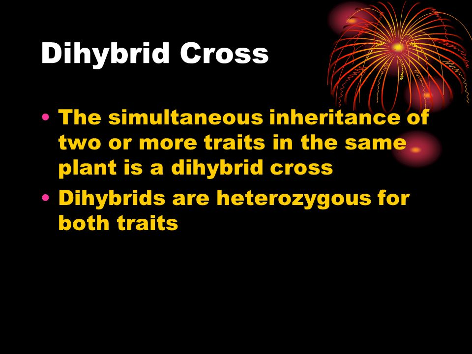 Dihybrid Cross The simultaneous inheritance of two or more traits in the same plant is a dihybrid cross.