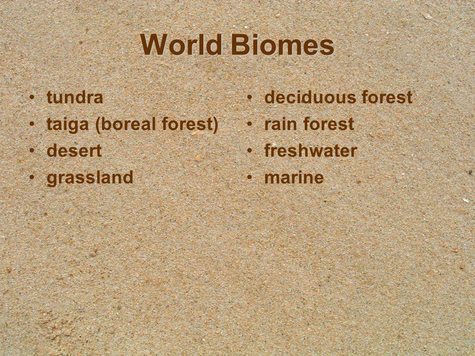 Awesome Earth Floor Biomes Pearltrees. Tundra Terrestrial Biomes Uwsslec Libs At Of