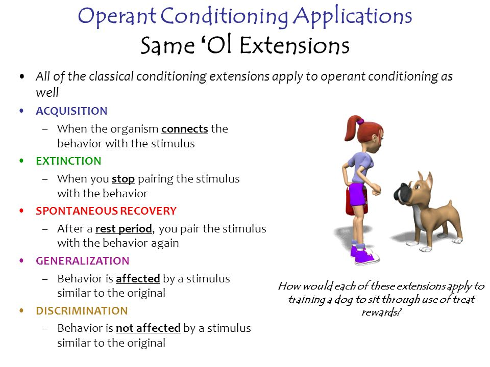 examples of operant conditioning Operant conditioning in psychology an example of operant conditioning as a  student at usc, one can assume that i've always taken schoolwork seriously and .