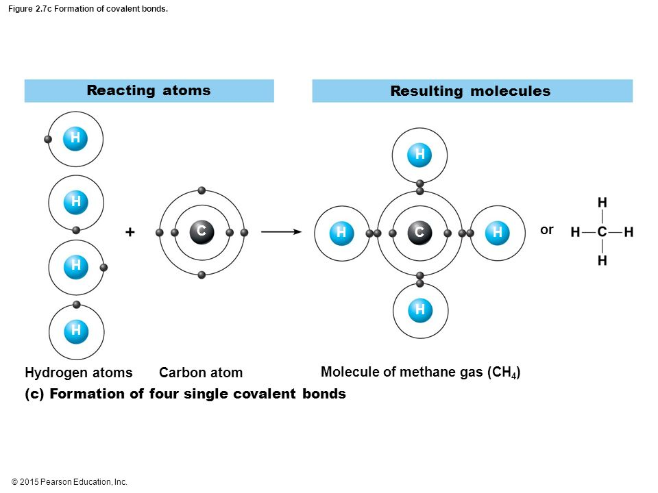 formation of covalent bonds The proximity between cysteine, lysine, or histidine on the target protein drove  covalent bond formation to the electrophile on the affibody.