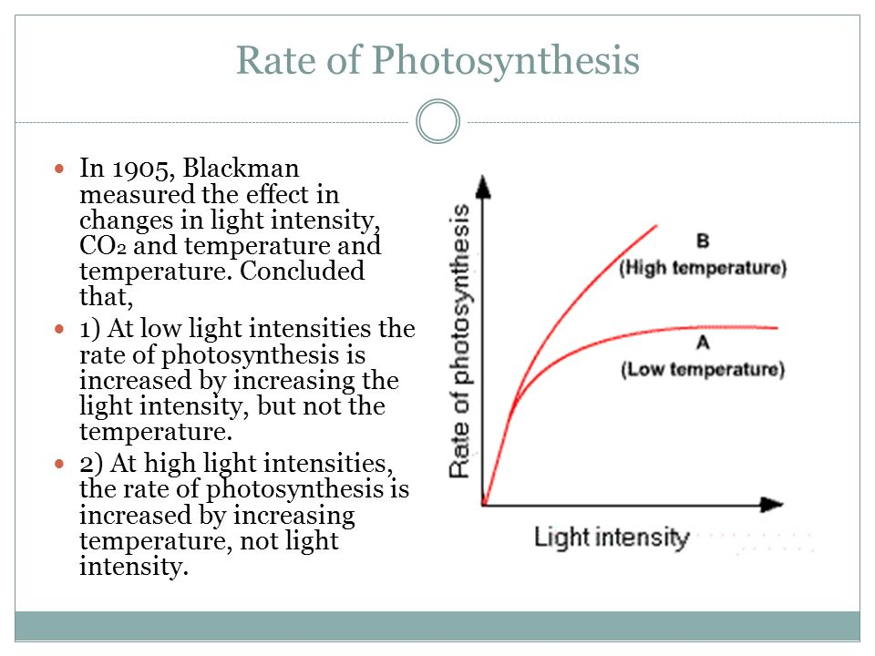 the effect of light intensity during The effect of light intensity and relative humidity on  figure 5 a shows the effect of light intensity during growth on the rate of dry.