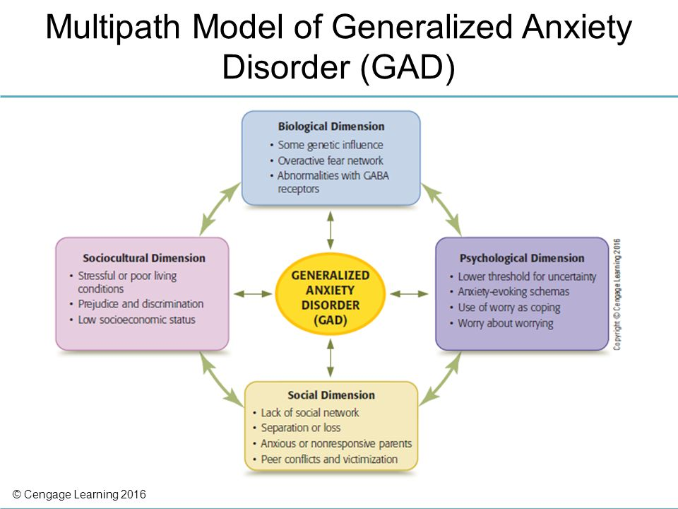 http://slideplayer.com/9023021/27/images/33/Multipath%20Model%20of%20Generalized%20Anxiety%20Disorder%20(GAD).jpg