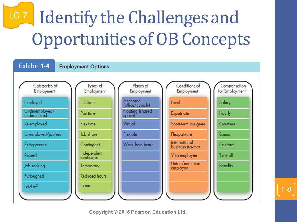 13 Challenges and Opportunities of Organizational Behavior