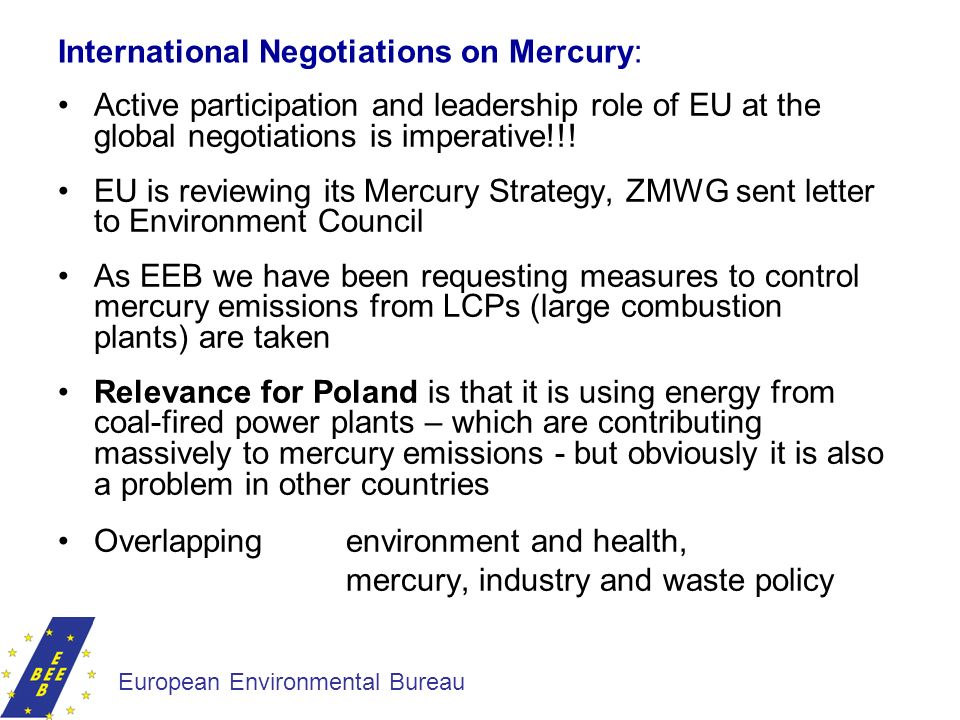 International Negotiations on Mercury: