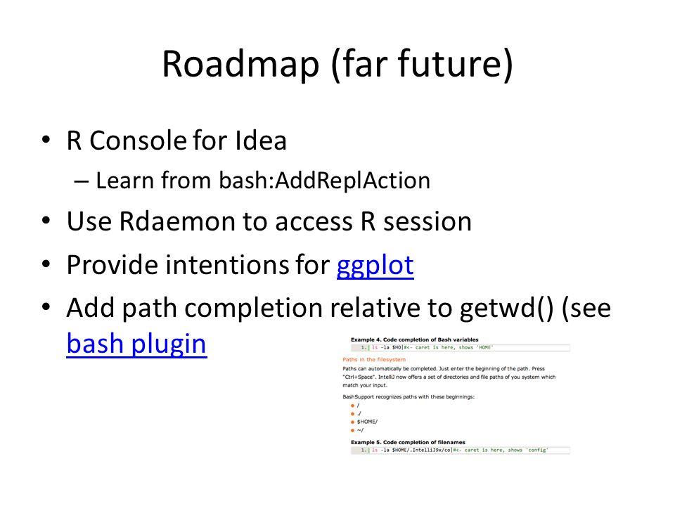 Roadmap (far future) R Console for Idea
