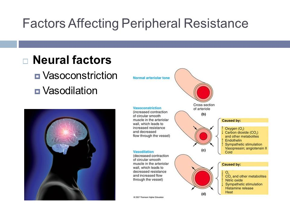 variables affecting urine output and solute Water homeostasis • the body maintains a balance of water intake and output by a series of negative feedback loops involving the endocrine system and autonomic nervous system.