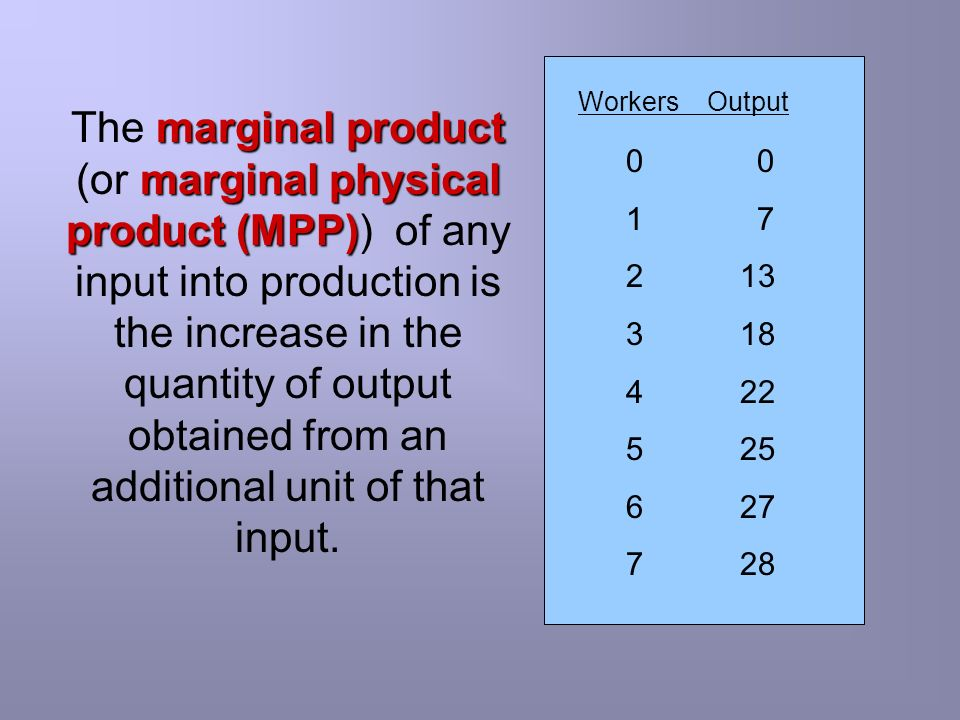 Workers Output