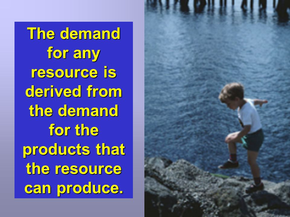 The demand for any resource is derived from the demand for the products that the resource can produce.