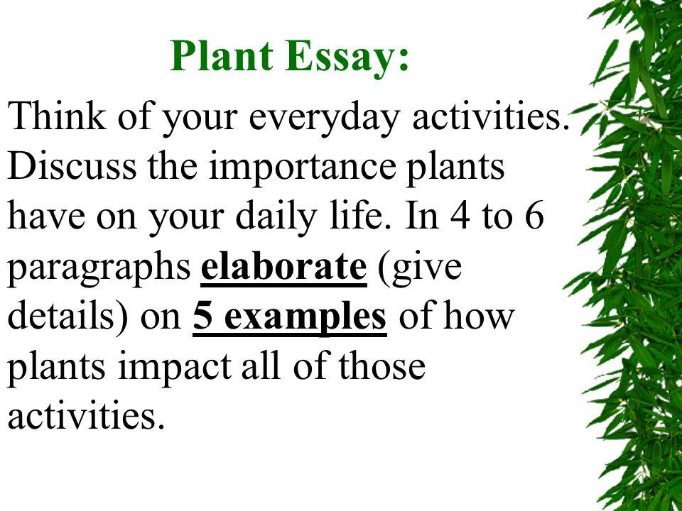 plant vocabulary define photosynthesis eukaryotic monocot 6 plant essay