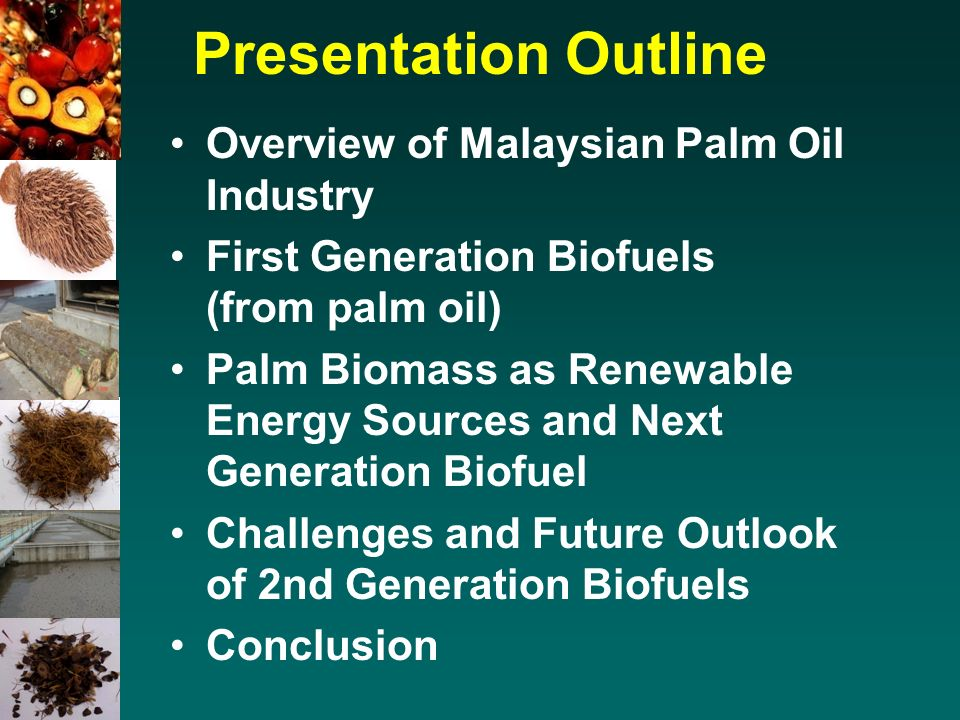 challenges faced by the palm oil industry in malaysia Growth of malaysia's palm oil sector over the years  key challenges faced by indian palm oil companies  global palm oil industry.