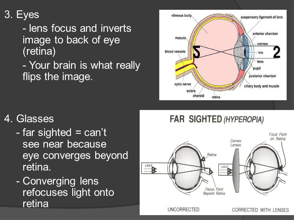Lenses Lenses are transparent objects that are used to refract ...