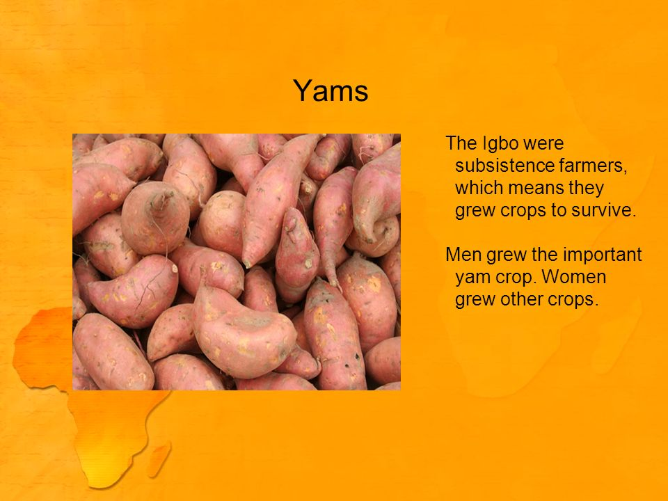 Yams The Igbo were subsistence farmers, which means they grew crops to survive.