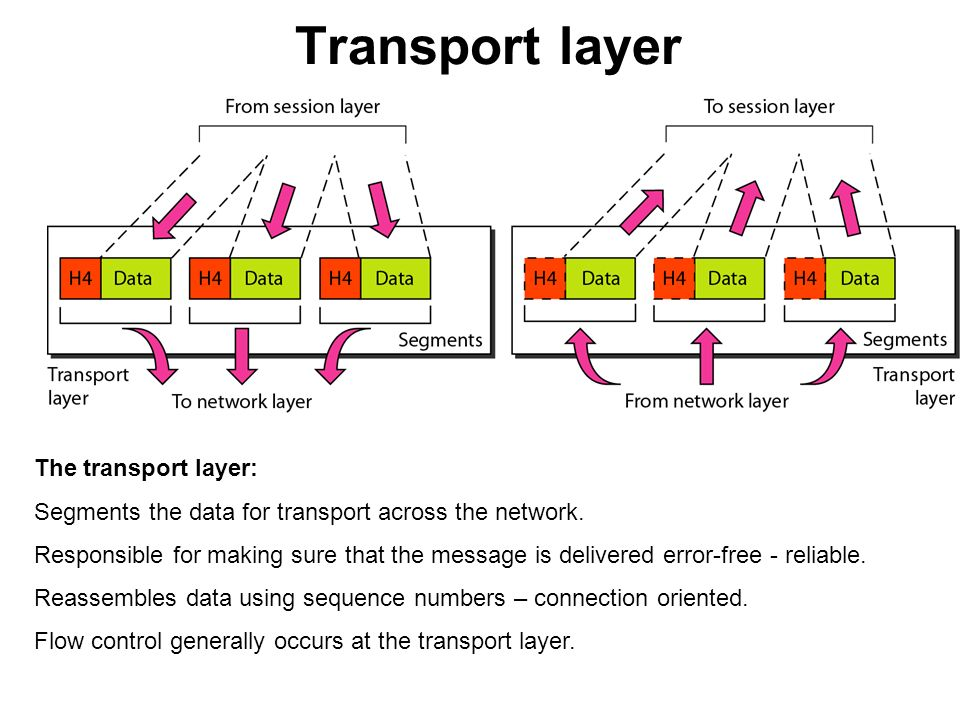 transport network