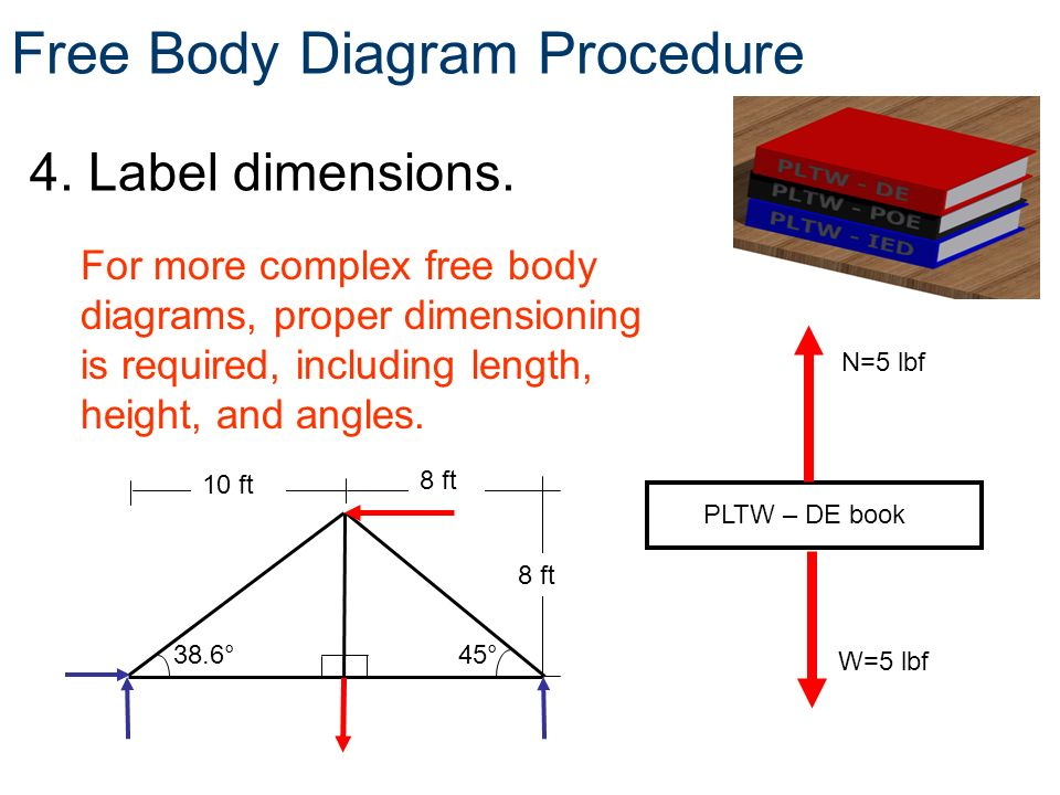 Extended Free Body Diagram Of A Seesaw Not Lossing Wiring Diagram
