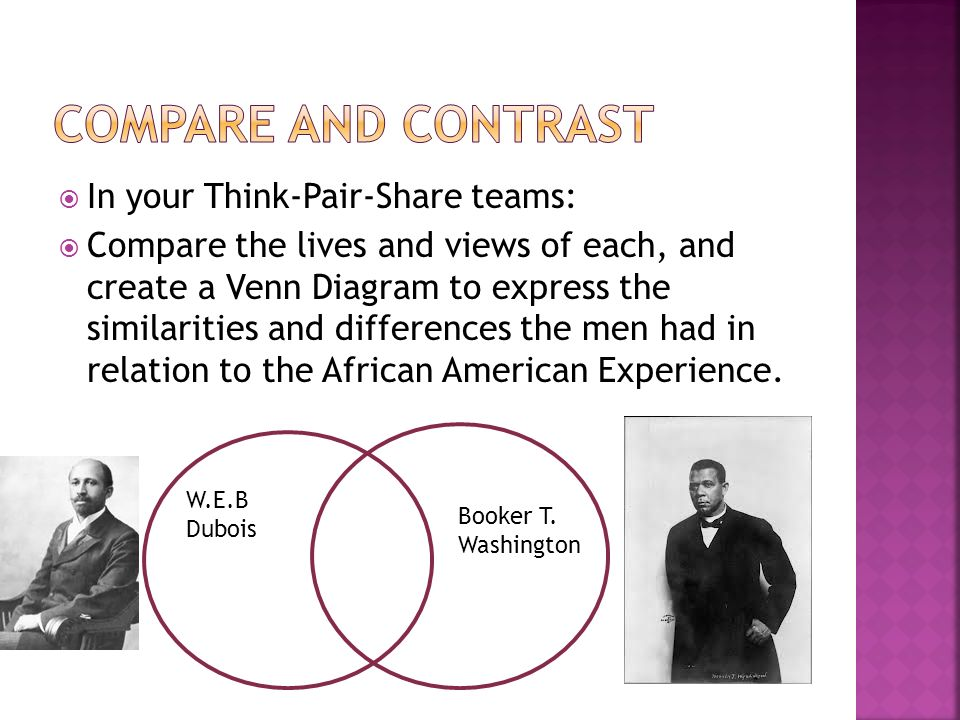 A comparison of important african american spokespersons booker t washington and web dubois