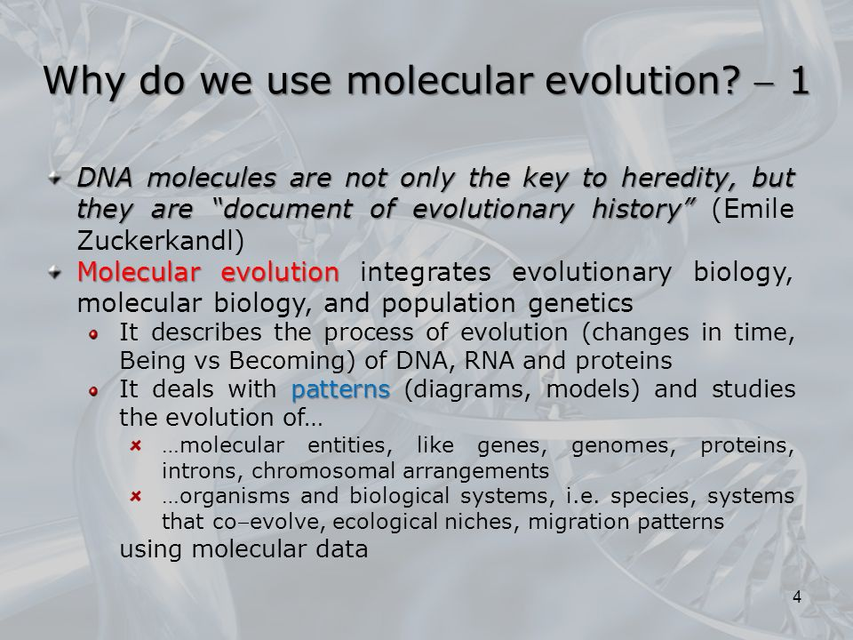 the history of molecular modeling biology essay A series of molecular dynamics and homology modeling computer labs for an undergraduate molecular modeling course donald e elmore †,, ryann c biochemistry and molecular biology education volume 38, issue 4 publication history issue published online: 5 aug 2010 article first.