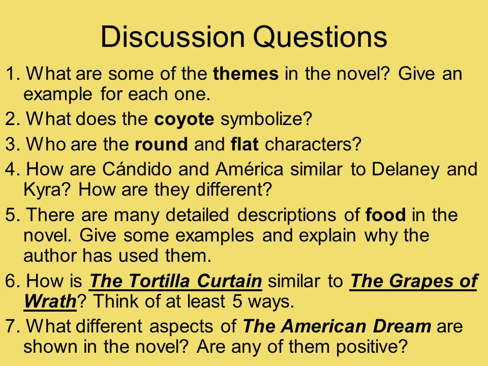 Tortilla curtain american dream essays