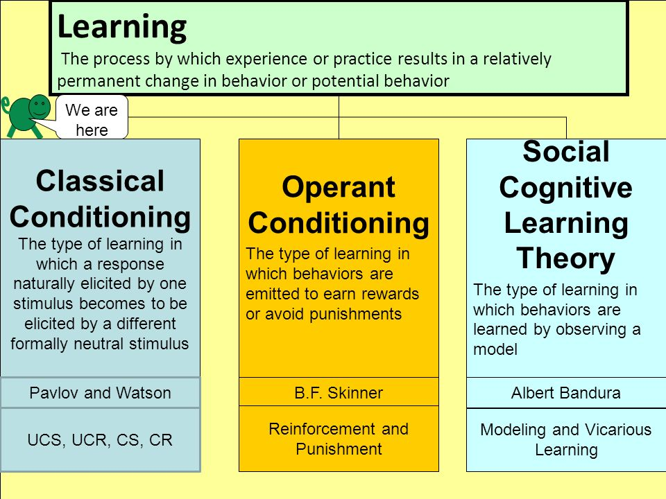 compare skinner and bandura Skinner vs bandura   in this essay i am going to compare skinner's operant conditioning and bandura's observational learning theory,.