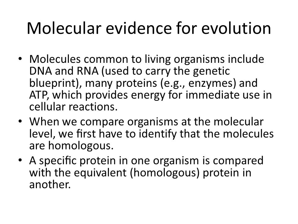 evidence for evolution includes According to charles darwin's theory of evolution by natural selection, organisms   or other form of evidence that can be expected to occur the same way under.