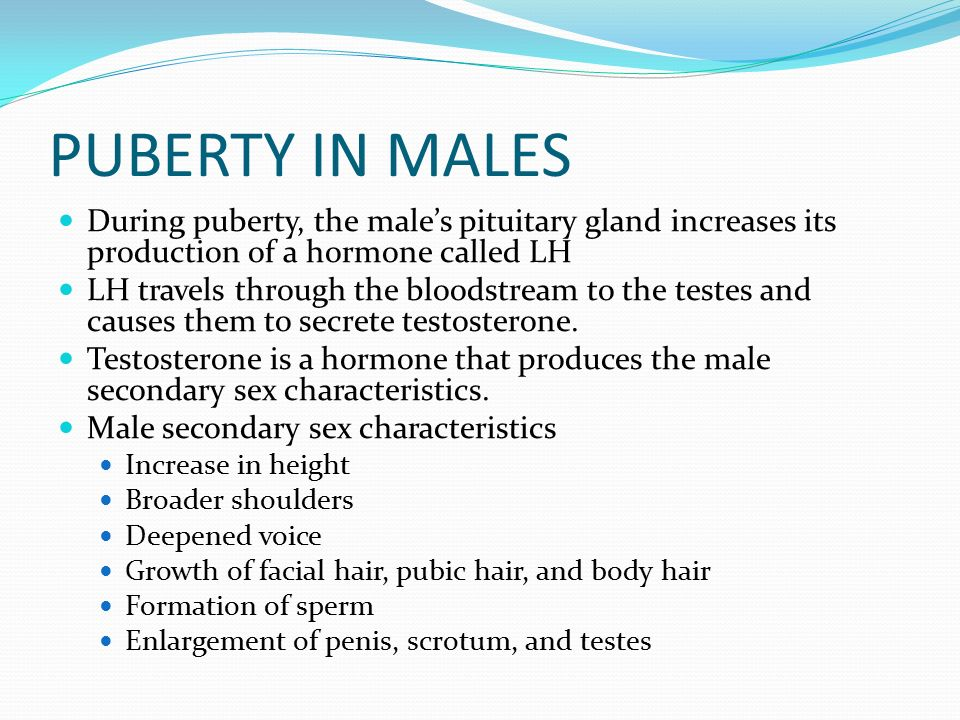 secondary sex characteristics of males