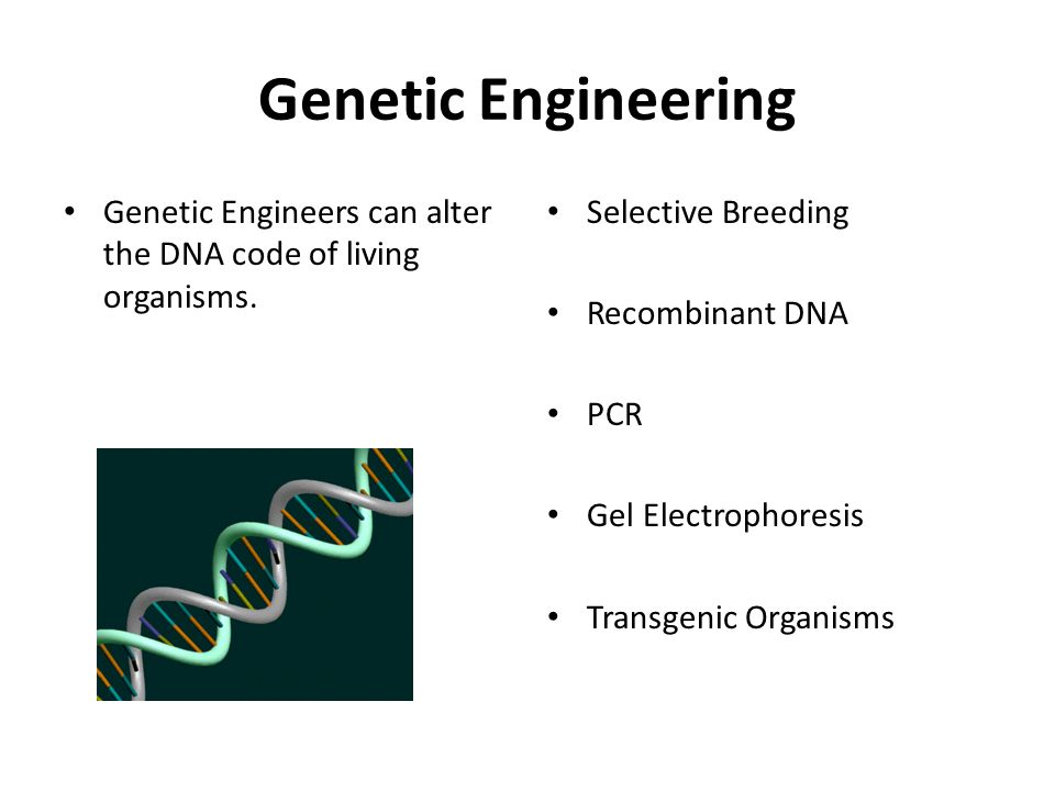 genetic engineering poses a number of With the advent and rapid development of genetic engineering poses greater risks than it does engineering in general, opponents of genetic engineering assert.
