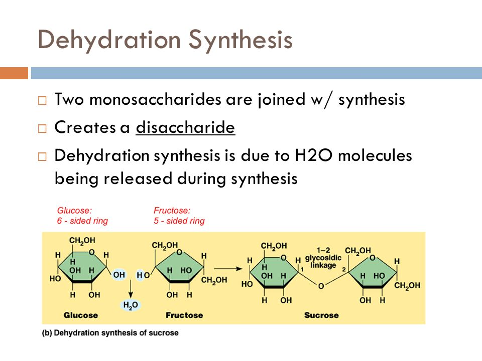 Dehydration Synthesis Example Carbohydrates energy. ...