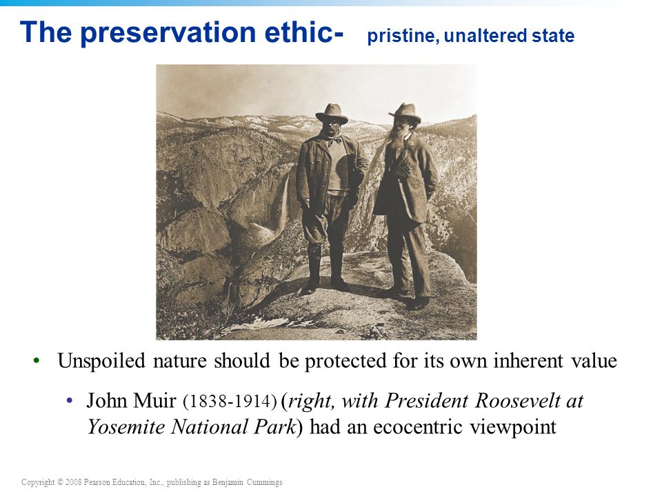 The preservation ethic- pristine, unaltered state