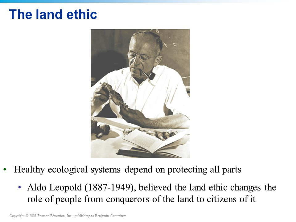The land ethic Healthy ecological systems depend on protecting all parts.