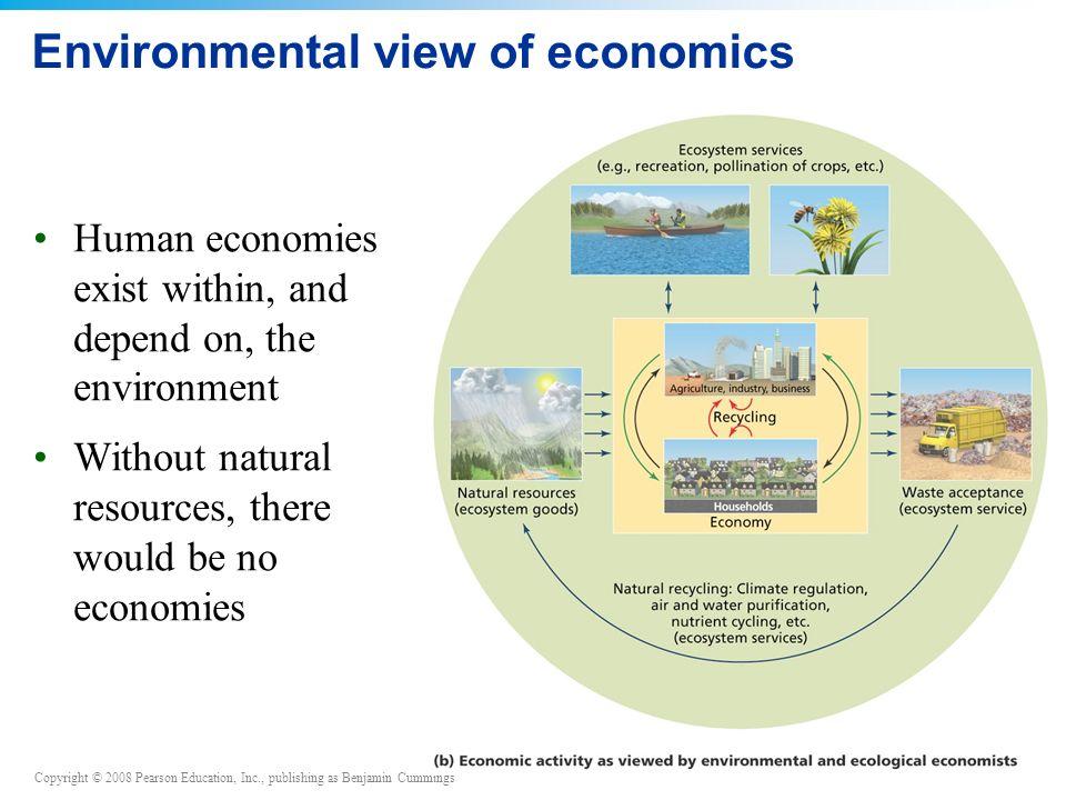 Environmental view of economics