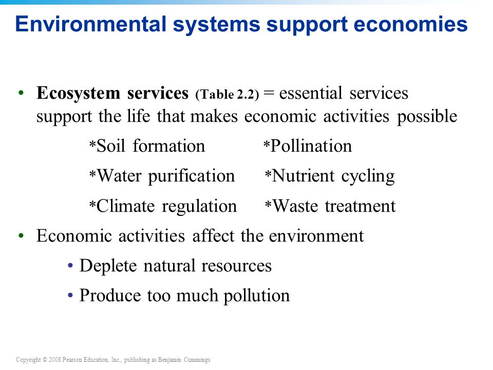 Environmental systems support economies