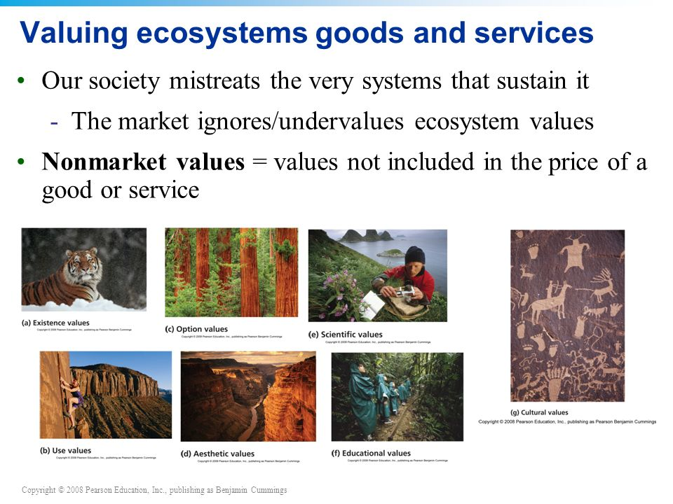 Valuing ecosystems goods and services