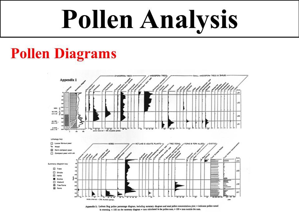 pollen analysis correlate quaternary stratigraphic units
