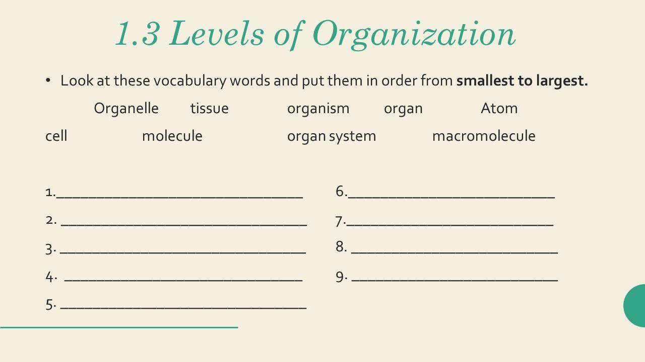 Ungewöhnlich Anatomy And Physiology Vocabulary Words Bilder ...