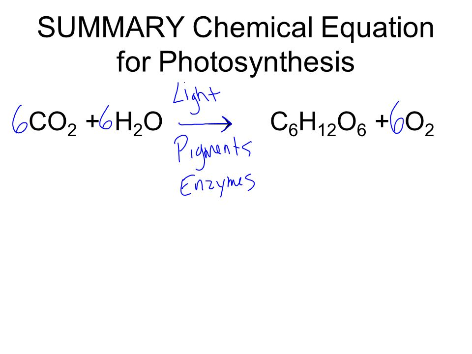 chemical equation for photosythesis Photosynthesis can be represented by means of a simple chemical equation: the stages of photosynthesis the equation for photosynthesis shown above is very misleading it suggests that changing carbon dioxide and water into carbohydrates is a simple, one-step.