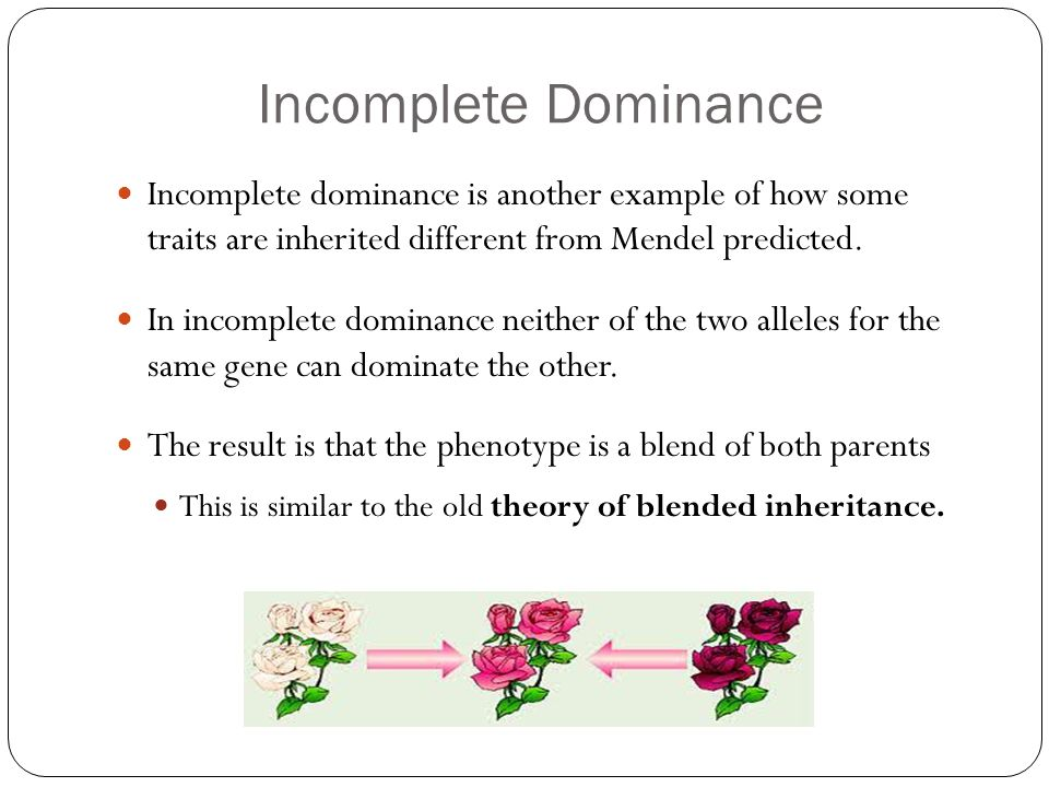 Other Methods of Inheritance: Codominance and Incomplete Dominance ...