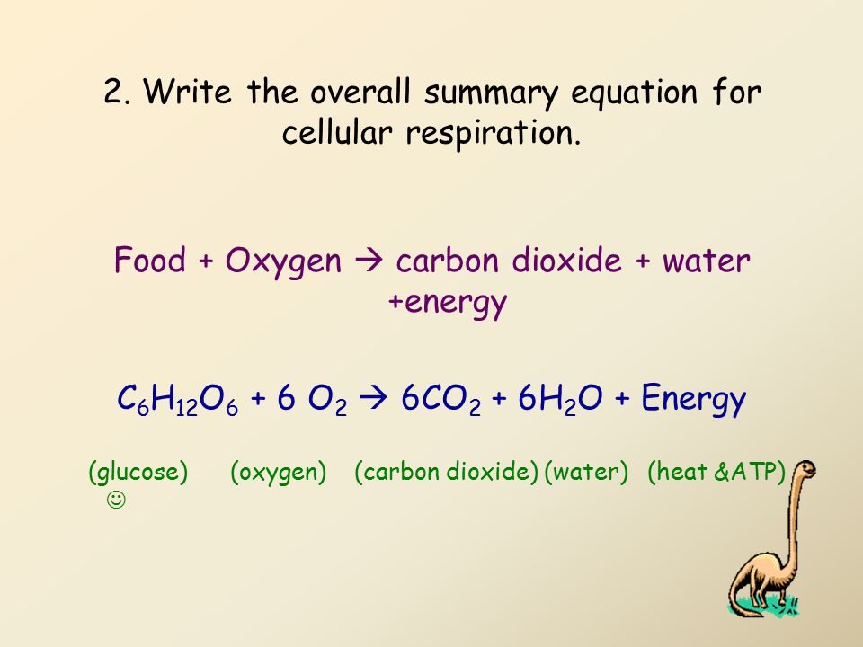 Oxidation-Reduction Reactions - Real-life applications